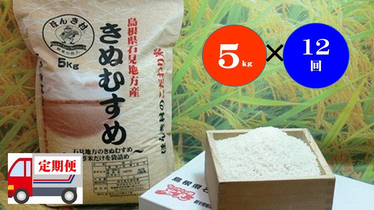 【令和2年産】石見産きぬむすめ60kg(5kg×12回コース)