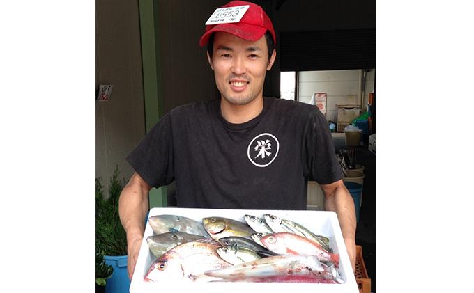 この男、極める!~浜田の旨い鮮魚12か月毎月お届けコース~