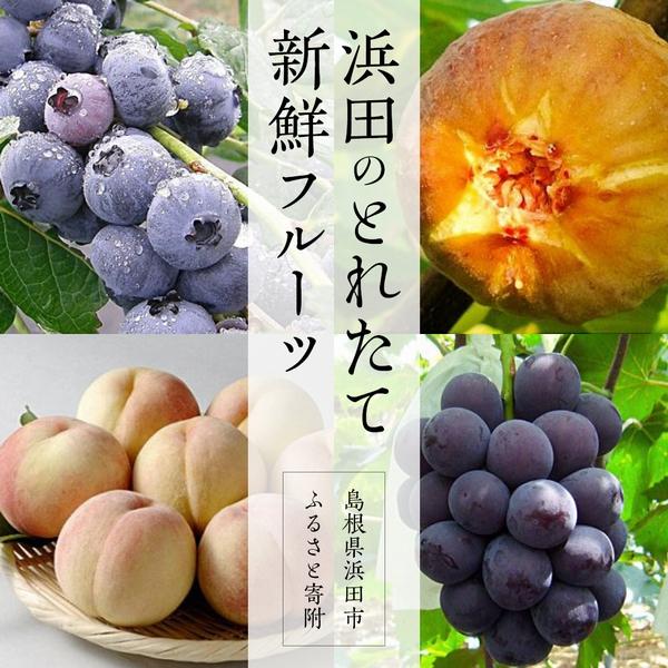 【季節のオススメ】浜田のとれたて!!新鮮フルーツ