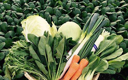 自然豊かな浜田市弥栄町で作られた「旬の野菜おまかせセット」