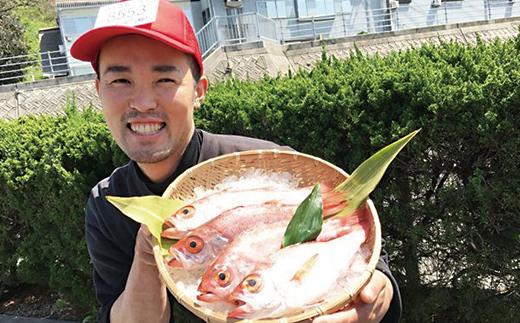 幻の高級魚「のどぐろ(鮮魚)」