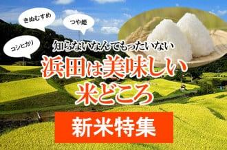 【新米特集】浜田は美味しい米どころ!!~知らないなんてもったいない~