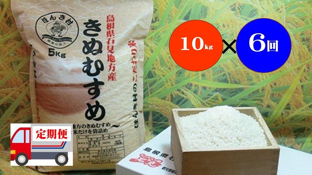 【令和2年産】石見産きぬむすめ60kg(10kg×6回コース)